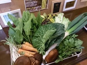 宮崎県都城野菜