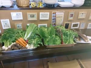 無農薬、無化学肥料、お野菜。