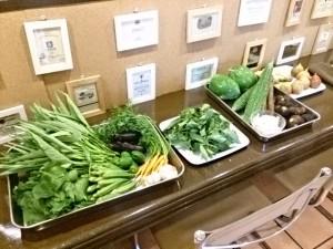 宮崎県都城無農薬お野菜